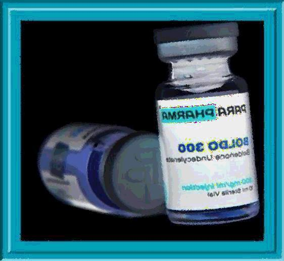 Buy Boldenone 300 by Pharmaqo Labs in USA without a prescription