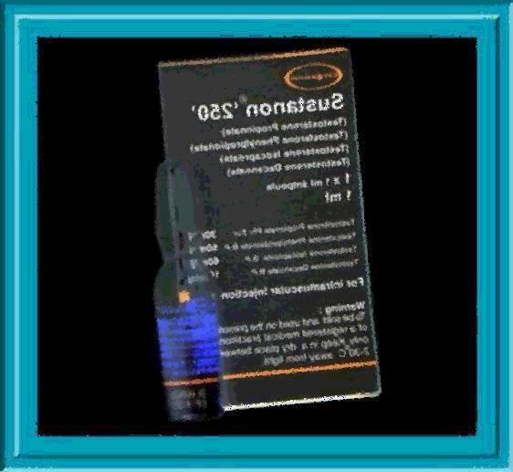 Buy Sustanon 250 by Organon